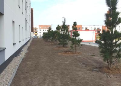 Tomaszek_Ogrody-drzewa-krzewy-deweloper