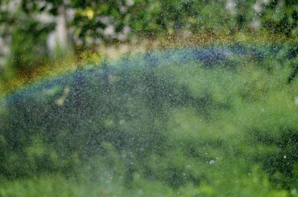 podlewnie-nawadnianie-ogrod